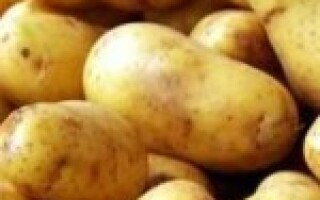 Щоб картопля не був солодким