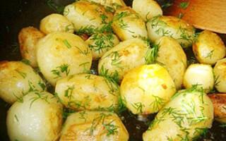 Розвантажувальний день на картоплі відгуки