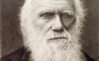 Чарльз Дарвін — цікаві факти