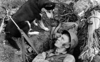 Друга світова війна — цікаві факти