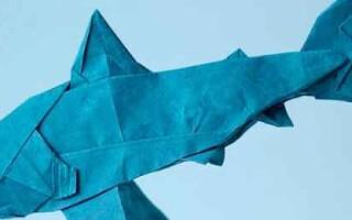 Як зробити акулу з паперу