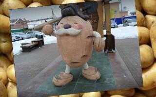 лікування картоплею