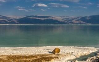 Мертве море — цікаві факти