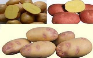 Картопля крохмаль