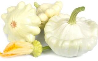 М'ята гарбуз огірок артишок патиссон картопля овочі