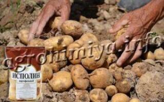 Добриво для картоплі