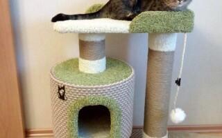 Як зробити будиночок для кішки