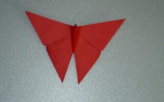 Як зробити метелика орігамі