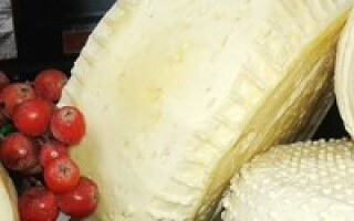 Як зробити сир з козячого молока