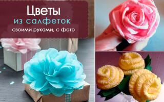 Як зробити квітку з серветки