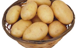 Сік картоплі лікування шлунку і кишечника відгуки