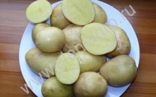 Картопля Маделін
